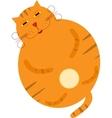 sleeping cute kitten vector image vector image