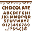 chocolate latin alphabet vector image vector image