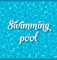 creative of swimming pool top vector image vector image