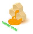 honey allergen free icon isometric style vector image vector image