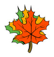 maple leaves icon cartoon vector image vector image