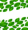 realistic green leaves isolated texture on white vector image vector image