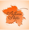 yellowed maple leaf hello autumn hand lettering vector image vector image