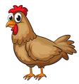 A hen vector image vector image