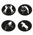 Black and white Horse logo vector image vector image