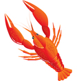 boiled crawfish vector image vector image