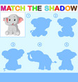 find the correct shadow of the elephant vector image