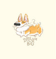 happy corgi dog play bone poster funny vector image vector image