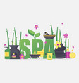 spa symbols and accessories vector image vector image