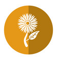 sunflower flora leaves icon shadow vector image vector image