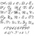 Elegant black font Vintage letters vector image