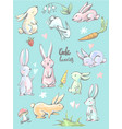 big collection of cute cartoon style hares in vector image