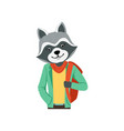 cute fashion racoon guy character with backpack vector image vector image