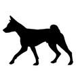 dog basenji breed silhouette vector image vector image