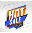hot sale promotional concept template for banner vector image