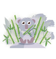 koala australian animal cute cartoon character vector image vector image