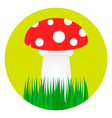mushroom and grass flat style vector image