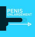 penis enlargement symbol vector image