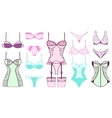 Female fashion lacy bra and panties vector image