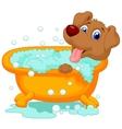 Cartoon Dog bathing time vector image