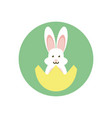 eggshell with cute rabbit icon block style icon vector image vector image