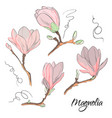 magnolia flower sketch repeat botanical floral vector image