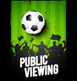 soccer football sport public vector image vector image