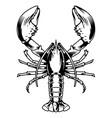 vintage monochrome aquatic creature concept vector image