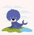 white background with color scene cute seal vector image