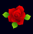 collection roses on white background icon rose vector image vector image