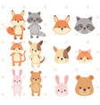 cute and little animals group characters vector image