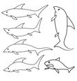 shark set vector image vector image