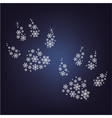 snowflakes paws vector image vector image
