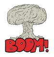 big bomb vector image