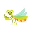 big green mantis with huge eyes and long vector image