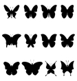 Butterflies black silhouettes vector image