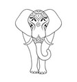 elephant on white background vector image vector image