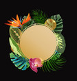 tropical plants cicle design template bird of vector image vector image