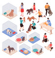 animal shelter isometric set vector image