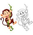 drafting animal for monkey on vine vector image vector image