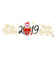 pig in the role of santa claus banner vector image