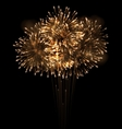 realistic fireworks exploding in night sky vector image vector image