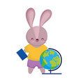 back to school cute rabbit with globe map and vector image vector image