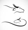 buffalo vector image vector image
