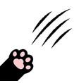 cat claw scratching black paw print leg foot