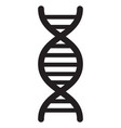 dna code icon vector image