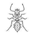 mechanical ant animal engraving vector image vector image