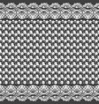 seamless texture black and white lace pattern for vector image vector image
