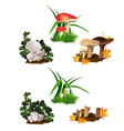 set mushrooms isolated on white background cut vector image