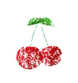 a red cherry painted with a brush vector image vector image